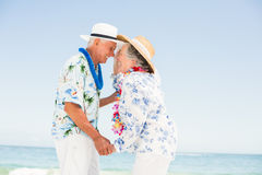 Senior couple looking at each other on the beach Stock Photography