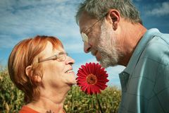 Senior couple love Stock Images