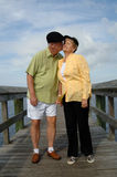 Senior couple in love. A senior couple outdoors kissing standing on a boardwalk stock image