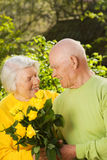Senior couple in love Stock Photos