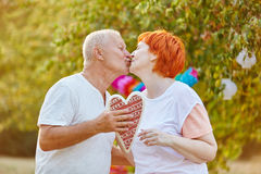Senior couple in love kissing Royalty Free Stock Photography