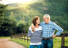A senior couple in love looking at each other outdoors in nature. Copy space. A joyful senior couple in love looking at each other outside in nature. Copy space royalty free stock image