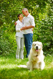 Senior couple in love with pet dog Royalty Free Stock Image