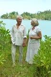 Senior couple in lush bushes. Senior couple standing in lush bushes near sea Stock Image