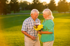 Senior couple on meadow background. Royalty Free Stock Photo