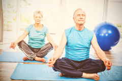 Senior couple meditating at home. Senior couple meditating with eyes closed on exercise mat at home Stock Image