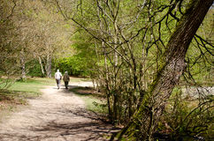 Senior couple out for a stroll. A senior couple walking along a path in nature. Great for nature and health benefits, senior people exercise articles Stock Image