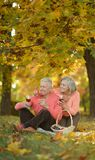 Senior couple outdoors. Happy senior couple drinking wine  in autumn park Royalty Free Stock Photography