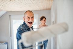 Senior couple painting walls in new home, having fun. Relocation concept. royalty free stock photo