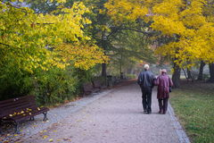 Senior couple in  park Royalty Free Stock Photography