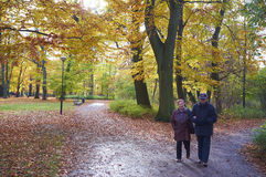 Senior couple in the park Royalty Free Stock Images