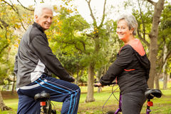 Senior couple in the park Royalty Free Stock Photography