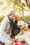 Senior couple in the park Stock Photos