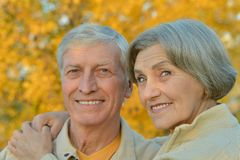 senior couple  in the park Royalty Free Stock Photos