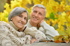 Senior couple in park Stock Images