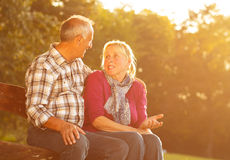 Senior couple in a park sitting on the bench Stock Image