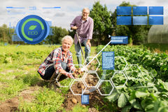 Senior couple planting potatoes at garden or farm. Organic farming, agriculture and people concept - senior couple planting potatoes at garden or farm stock photos
