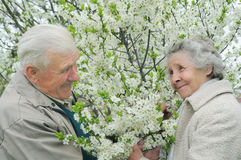 Senior couple play. Hide-and-seek among flowering garden Royalty Free Stock Images