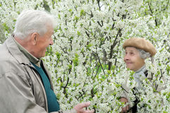 Senior couple play hide-and-seek. Among flowering garden Stock Photography