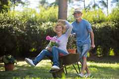 Senior couple playing with a wheelbarrow Stock Images