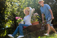 Senior couple playing with a wheelbarrow Royalty Free Stock Photo