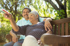 Senior couple pointing to a distance. In garden Royalty Free Stock Photo