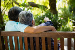 Senior couple pointing to a distance in garden. Rear view of senior couple pointing to a distance in garden Stock Image