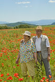 Senior couple on poppy field in early summer Royalty Free Stock Images