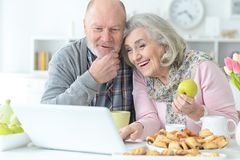 Senior couple portrait. With laptop at home Royalty Free Stock Photo