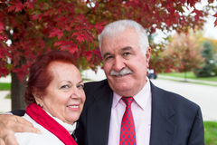 Senior Couple Portrait Under the Autumn Tree Stock Image
