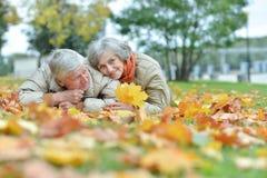 Senior couple posing. Happy Senior couple posing in autumn park Stock Photography