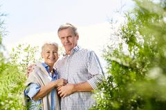 Senior Couple Posing in Park. Waist up portrait of smiling senior couple looking at camera while posing in green garden outdoors, copy space royalty free stock photo