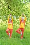 Senior couple practicing yoga Stock Photography