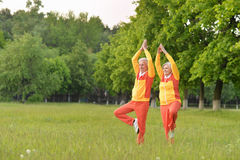 Senior couple practicing yoga Stock Image
