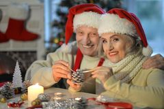 Senior couple preparing for Christmas Royalty Free Stock Image