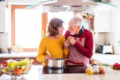 Happy senior couple cooking in the kitchen. royalty free stock image