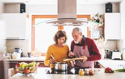 Senior couple preparing food in the kitchen. An old men and women inside the house Royalty Free Stock Photography