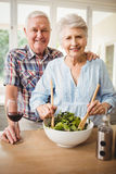 Senior couple preparing salad Royalty Free Stock Image