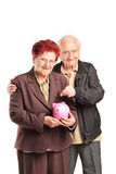 Senior couple putting money into a piggybank Royalty Free Stock Images