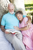 Senior Couple Reading Together Outdoors Royalty Free Stock Image