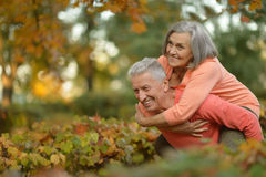 Senior couple relax in autumn park Royalty Free Stock Image