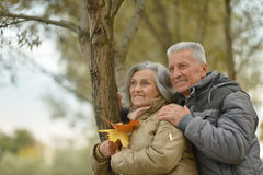 Senior couple relax in autumn park Royalty Free Stock Photos
