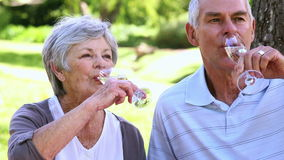 Senior couple relaxing in the park together having champagne. On a sunny day stock video