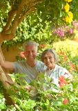 Senior couple at the resort Stock Images