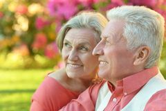 Senior couple resting Royalty Free Stock Photo
