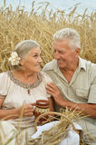 Senior couple resting at  summer field Stock Images