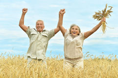 Senior couple resting at  summer field Royalty Free Stock Photo