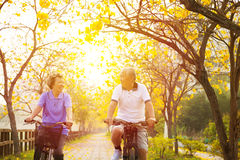 Senior couple ride on bicycle  in the park Stock Photography