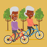 Senior couple riding on bicycles in the park Stock Images