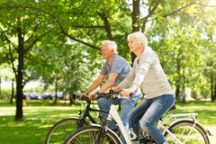 Senior Couple Riding Bikes. In Park stock images